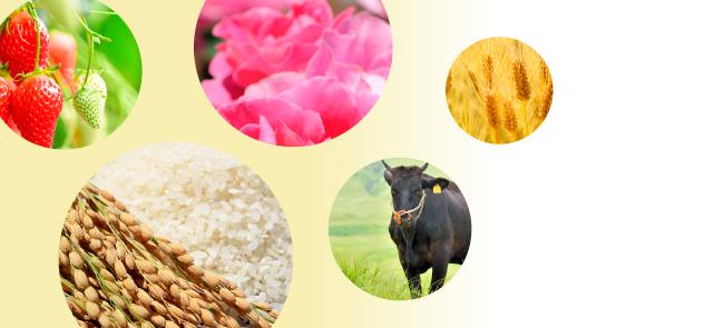 JAおやまの農畜産品