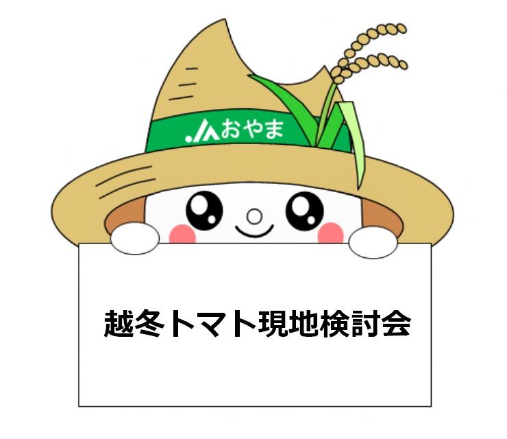 栽培管理に合わせた品種を~越冬トマト現地検討会~