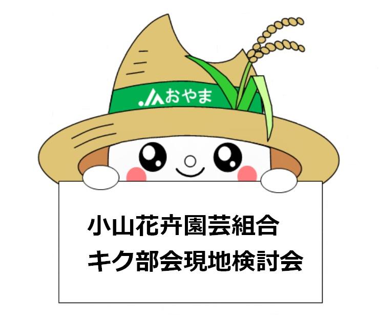 生育順調~小山花卉園芸組合キク部会現地検討会~