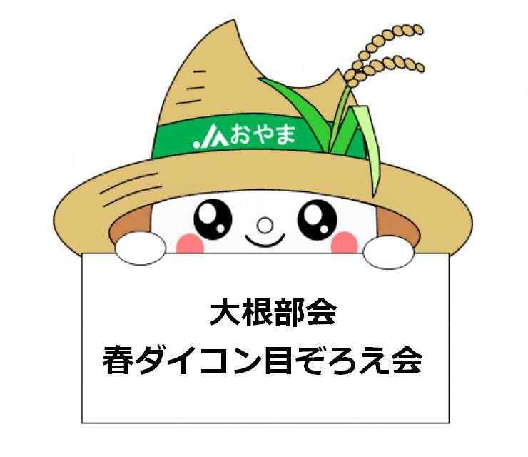 出荷ピーク迎える!~大根部会春ダイコン目ぞろえ会~