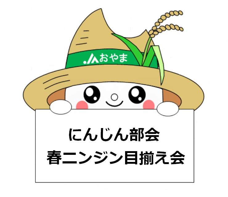 先端まで丸々とした仕上がりに!~にんじん部会春ニンジン目揃え会~