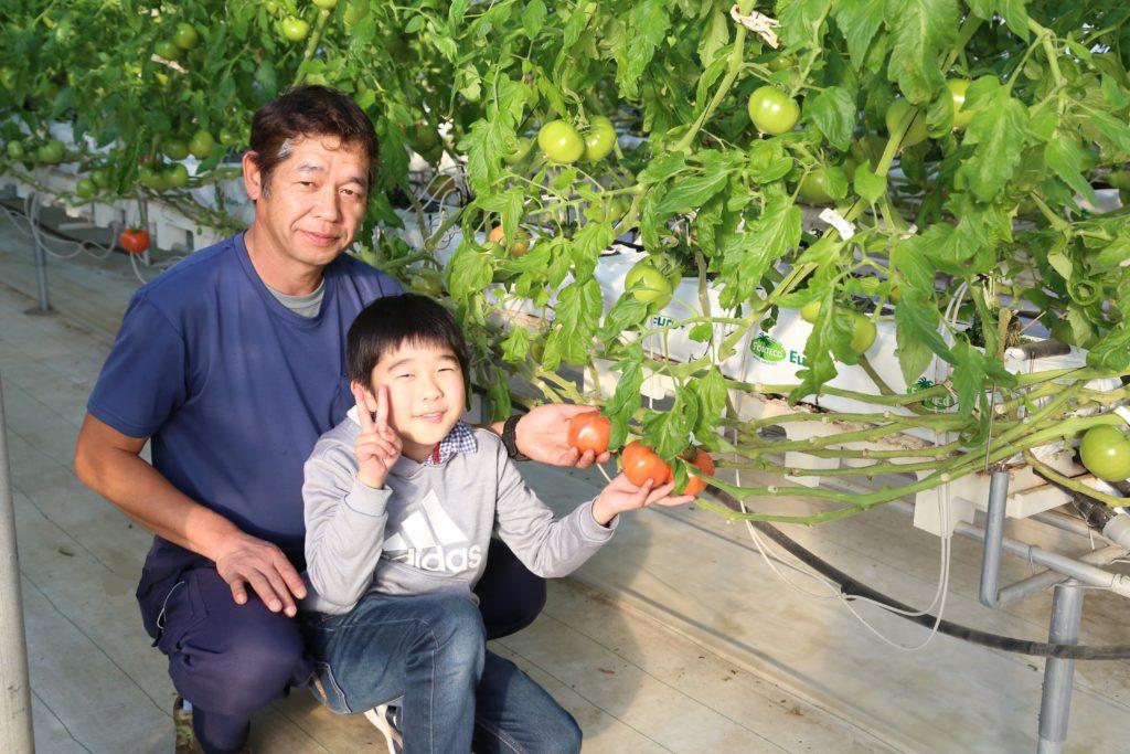 データ基にトマト生産 栃木県野木町の針谷正幸さん