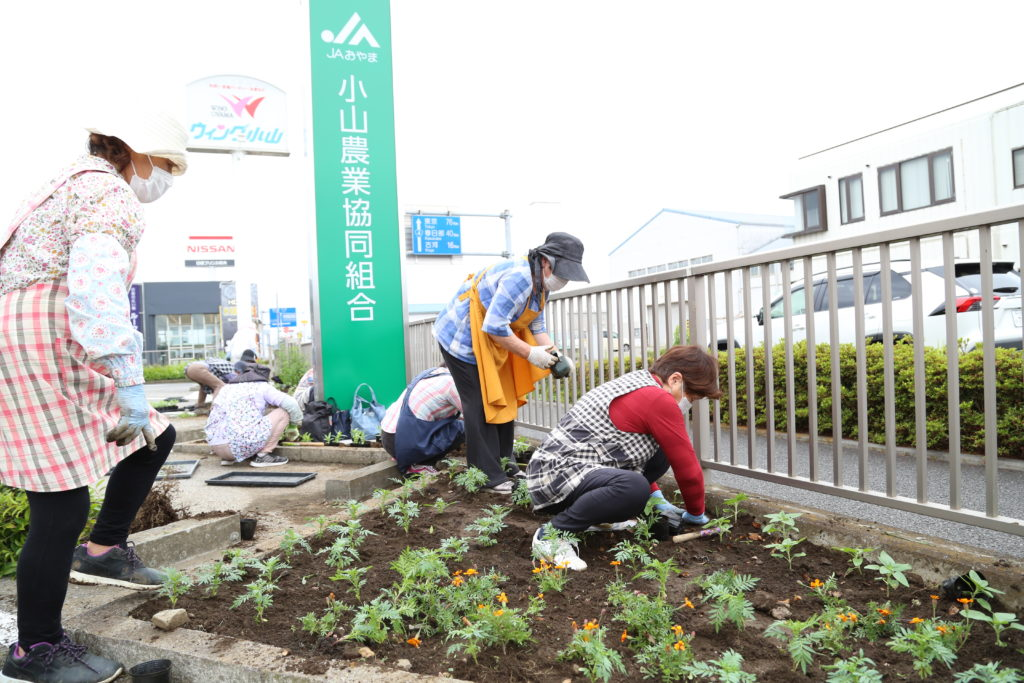 地域を花いっぱいに 苗を植え替え