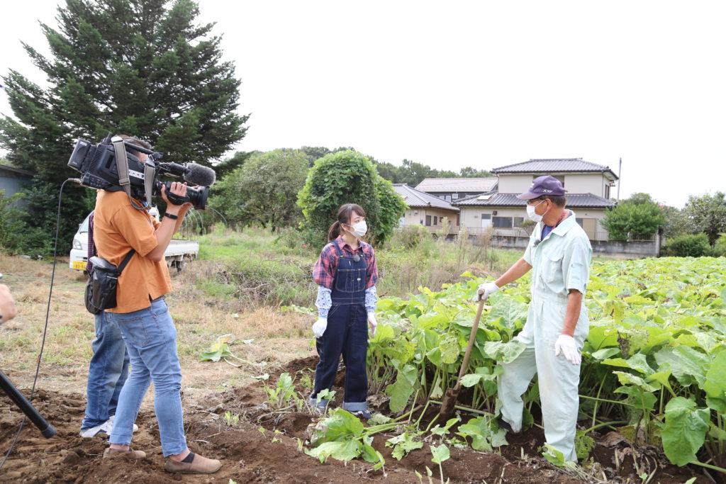 ゴボウの魅力 NHKで発信