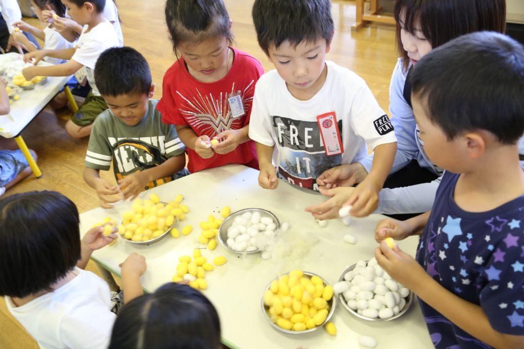 伝統の養蚕学んで 地元5小学校へ配蚕