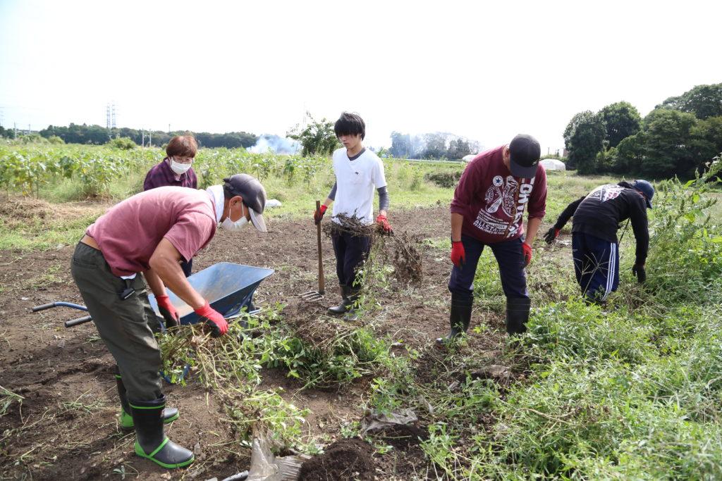 農福連携でラッカセイ JAS規格も視野