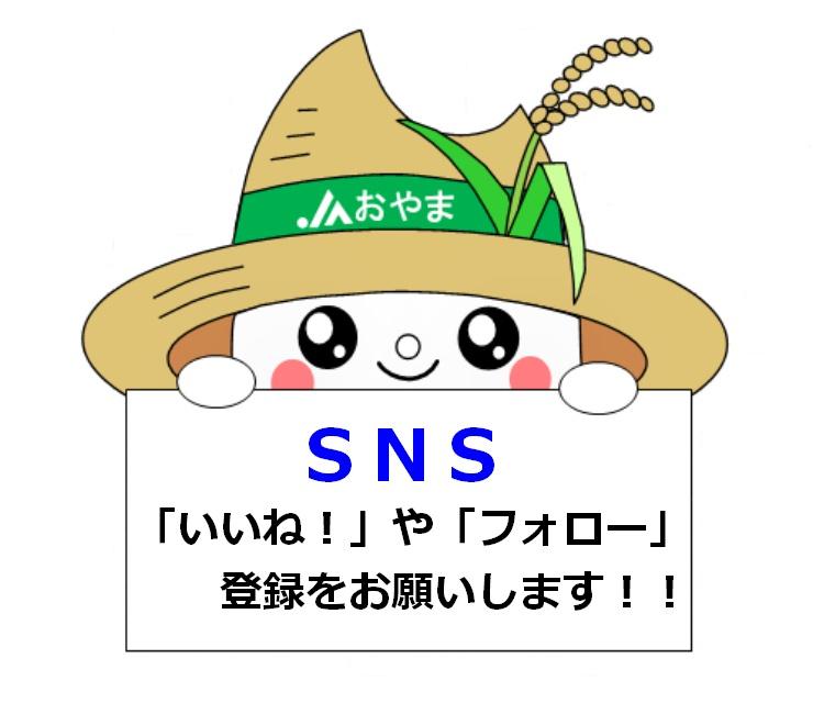 SNS 「いいね!」や「フォロー」登録をお願いします!!