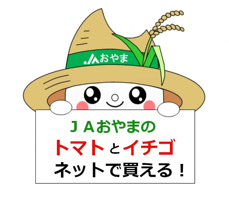 JAおやま直売所に来店できない方へ JAおやま産のトマト・イチゴがネットで買える!