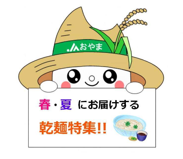 春・夏にお届けする乾麺特集!
