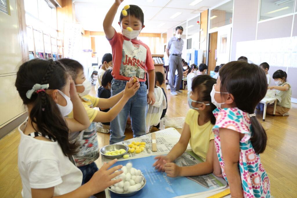 地元の養蚕 伝統を紡ぐ 児童が収繭を体験