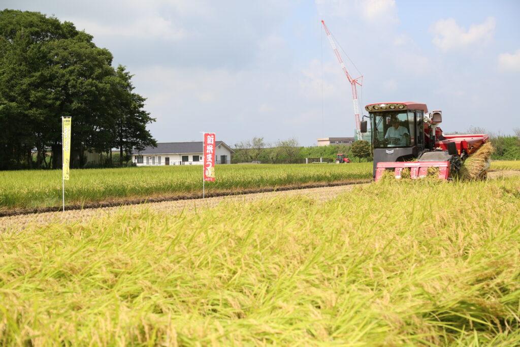 実りの秋 良質米狙う 特別米「生井っ子」収穫